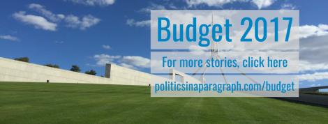 Budget 2017 (6)